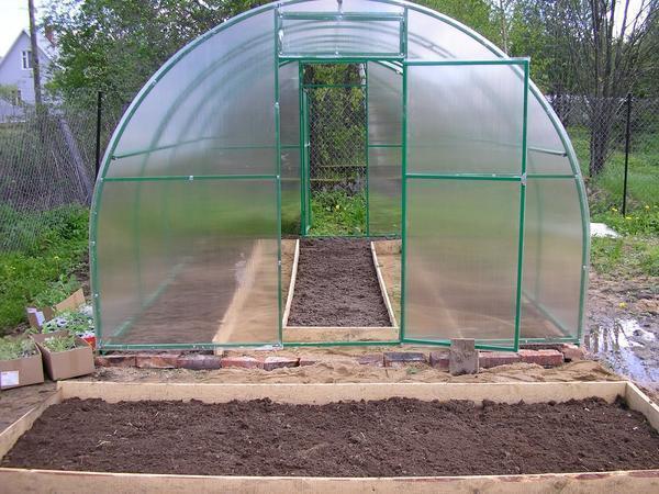 Выбирать размеры для теплицы нужно в зависимости от вида растений, которые вы собираетесь выращивать и их количества