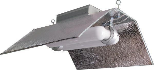 Люминесцентные лампы имеют длительный срок службы и небольшую цену